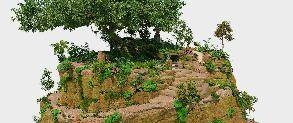 The Jungle Bunch-d_picdelaserenite_03_surfacing.jpg