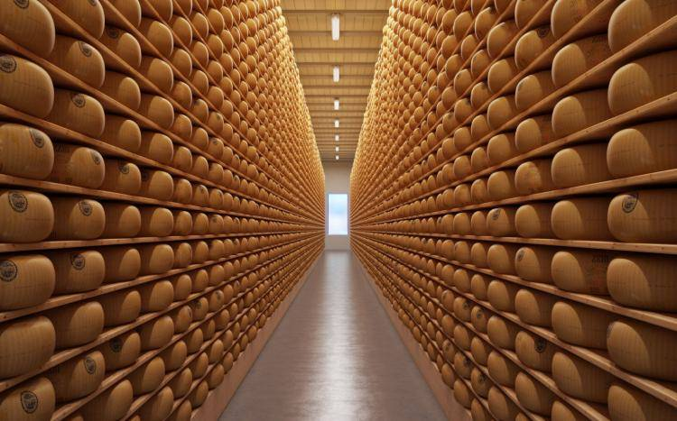 Cheese Bank , Forest Pack