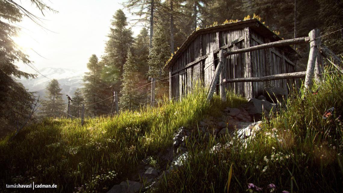 Old Alpine Hut , Forest Pack