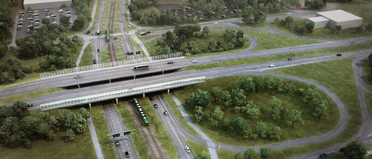 Aerial View of a Viaduct , Forest Pack