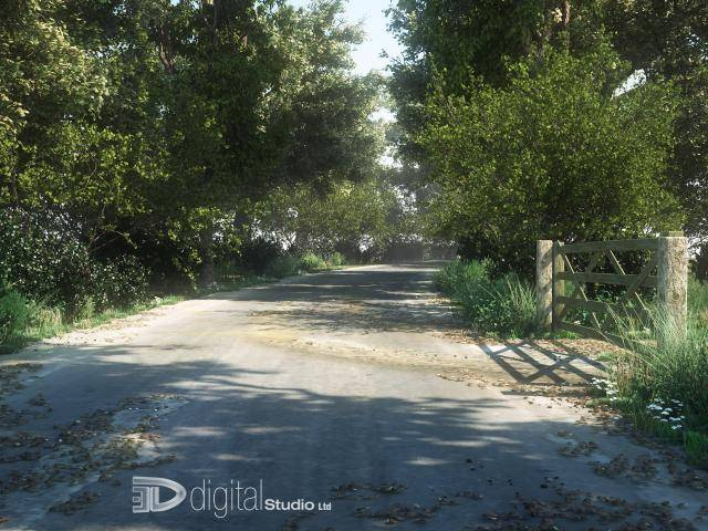 Road Across Trees , Forest Pack
