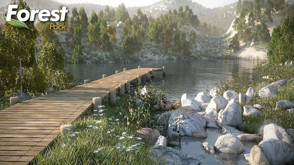 Beautiful Landscape , Forest Pack