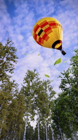 Balloon Air , Forest Pack