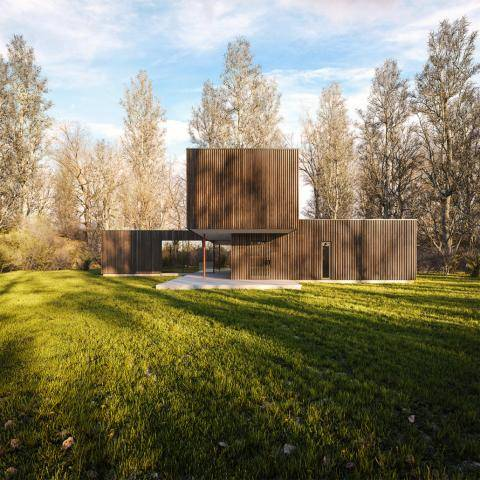Black Timber House , Forest Pack