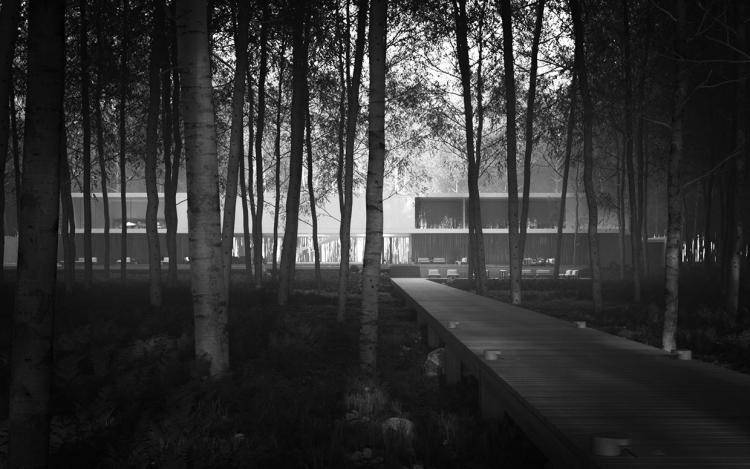 Superhouse amid the Trees , Forest Pack