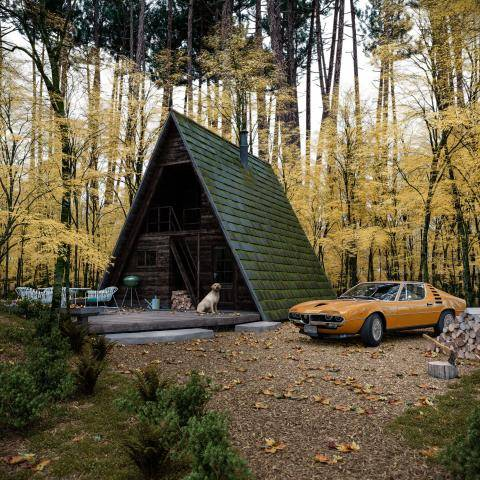 Wood Cabin , Forest Pack