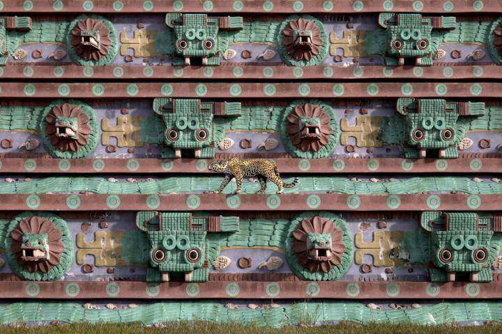 Teotihuacan , Forest Pack , Railclone