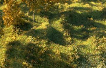 Itoosoft  Forest Pack  5c1a13c00fbe8/forestpack_aoki3.jpg
