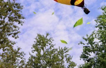 Itoosoft  Forest Pack  5c1a140fe978a/47_balloon_air.jpg