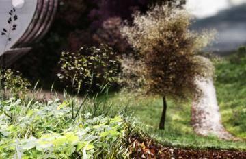 Itoosoft  Forest Pack  Railclone 5c1a14282799a/45_ext_winter_frontgrass.jpg
