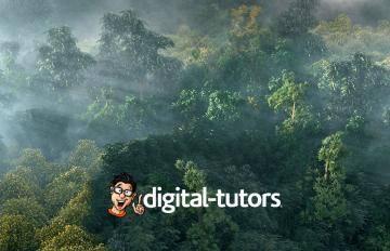 Itoosoft  Forest Pack  5c1a1533d39a7/stills_lightingd_f1001_logo.jpg