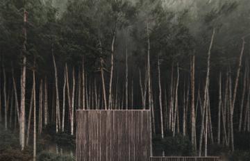 Itoosoft  Forest Pack  Railclone 5c1a15a0dce45/444_maria.jpg
