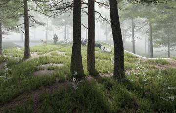 Itoosoft  Forest Pack  5c1a1690e00ab/5971d7dd2a5bb.jpg