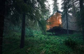 Itoosoft  Forest Pack  5c1a1776850af/5a0eeaca2e99a.jpg