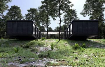 Itoosoft  Forest Pack  Railclone 5c1a185ca87cb/5c38834dbb406.jpg