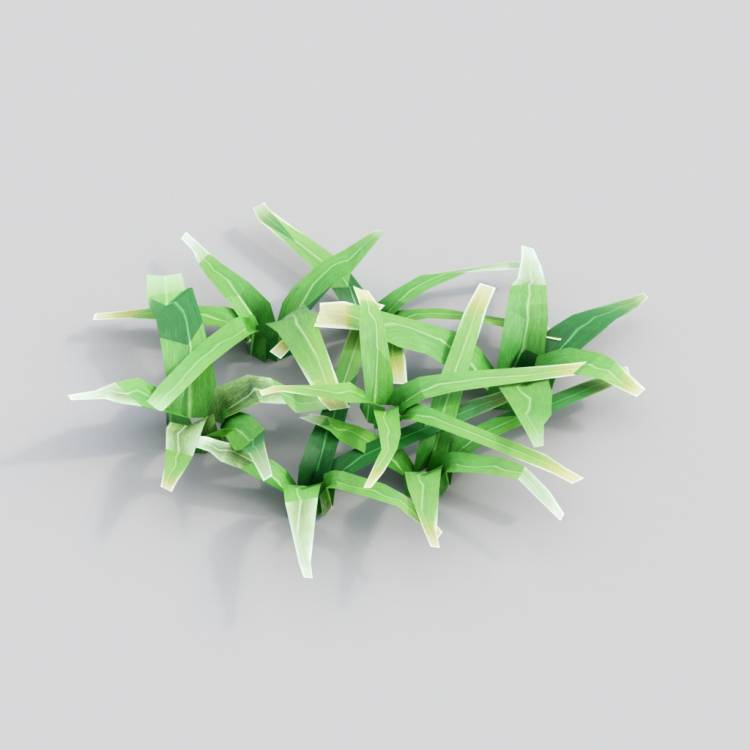 fpp-lib-3d-flowers_and_grass-cut_grass_02.jpg