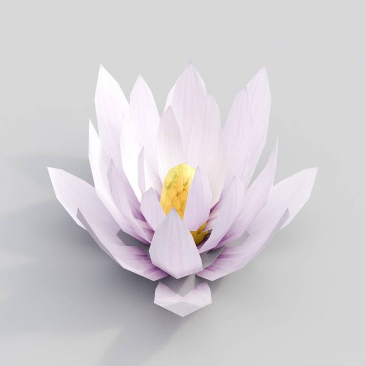 fpp-lib-3d-flowers_and_grass-water_lily_flower.jpg