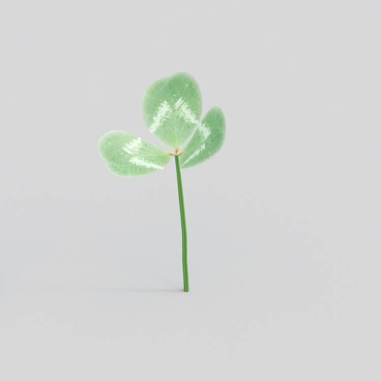 fpp-lib-3d-flowers_and_grass-white_clover_single.jpg