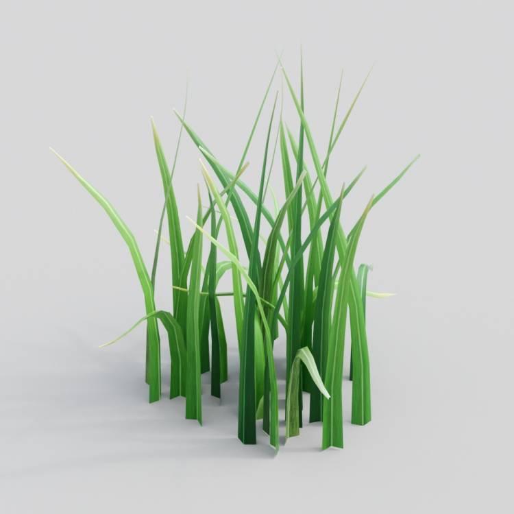 fpp-lib-3d-flowers_and_grass-wild_grass_07.jpg