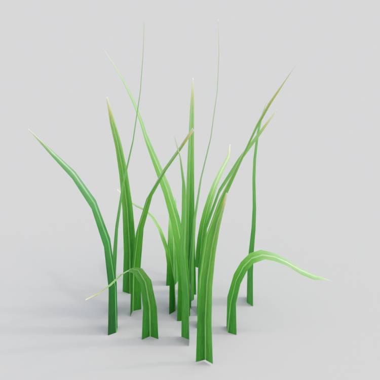 fpp-lib-3d-flowers_and_grass-wild_grass_08.jpg