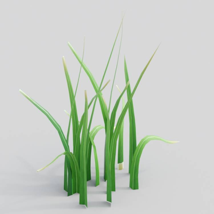 fpp-lib-3d-flowers_and_grass-wild_grass_09.jpg
