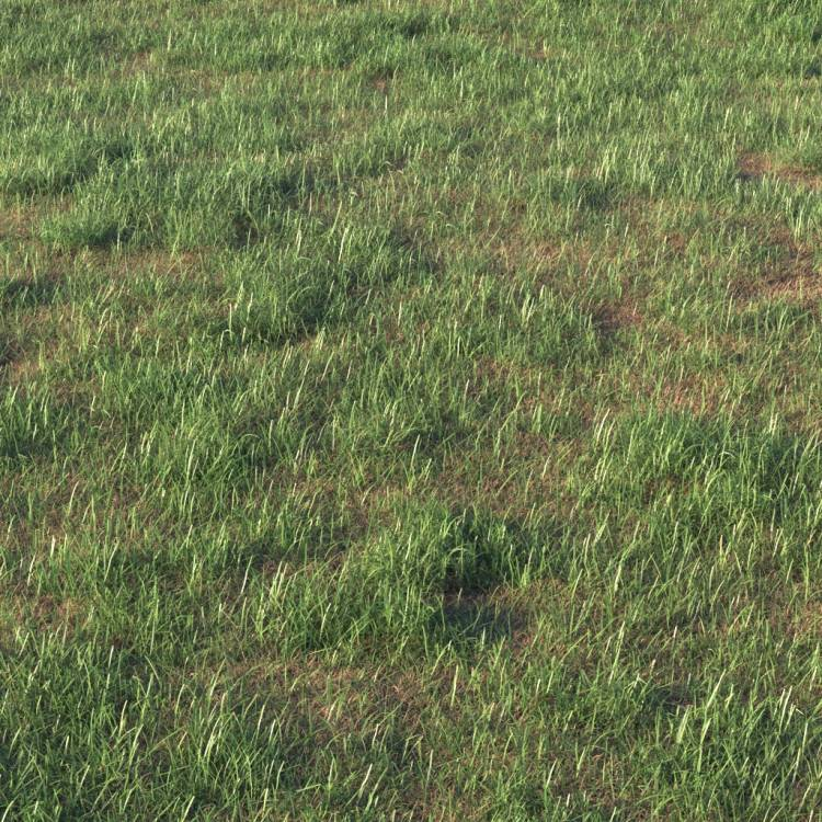 fpp-lib-presets-layered-lawns-grass_base_layer_5_detail.jpg