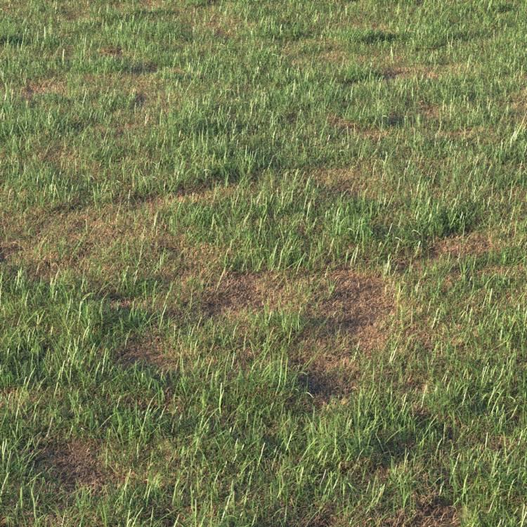 fpp-lib-presets-layered-lawns-grass_base_layer_6_detail.jpg