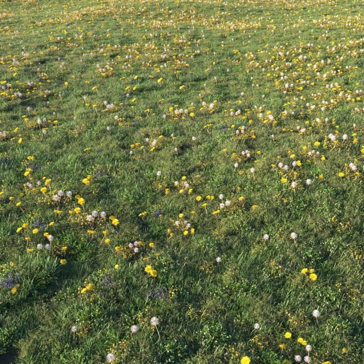 fpp-lib-presets-layered-lawns-unkempt_lawn_aio_2_large.jpg
