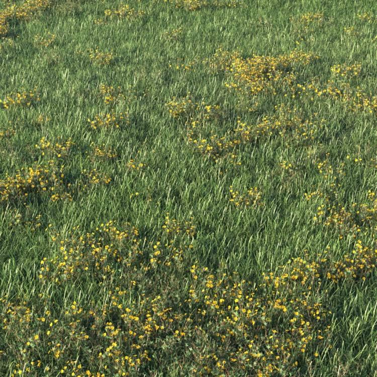fpp-lib-presets-layered-lawns-unkempt_lawn_aio_3_detail.jpg