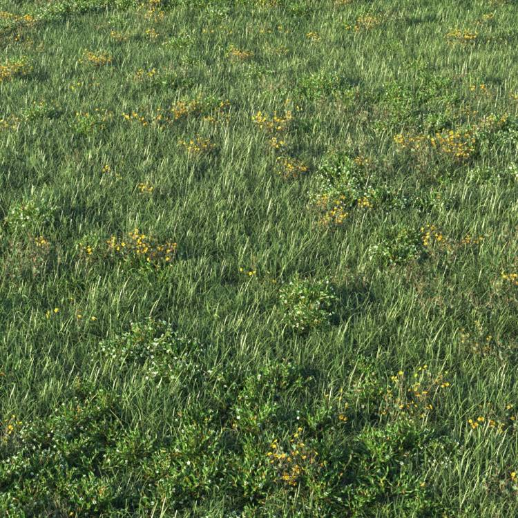 fpp-lib-presets-layered-lawns-unkempt_lawn_aio_4_detail.jpg