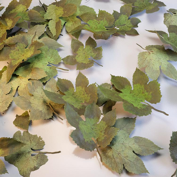 fpp-lib-presets-leaves-parthenocissus_detail.png