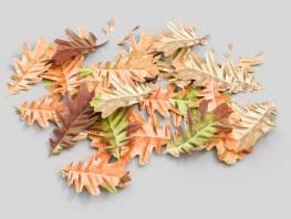 fpp-lib-3d-flowers_and_grass-oak_leaf_03.jpg