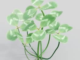 fpp-lib-3d-flowers_and_grass-white_clover_03.jpg