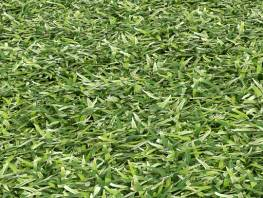 fpp-lib-presets-lawns-cut_grass_field_01_detail.jpg
