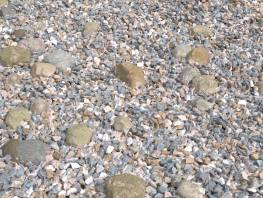 fpp-lib-presets-stones-decorative_small_rocks.jpg