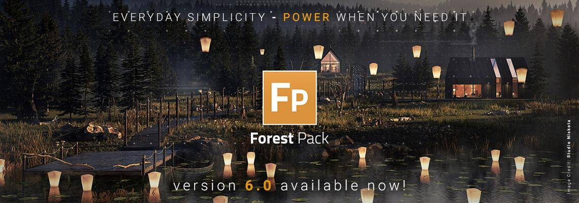 New Forest Pack 6