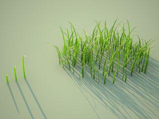 Realistic Grass-tut_realgrass2.jpg