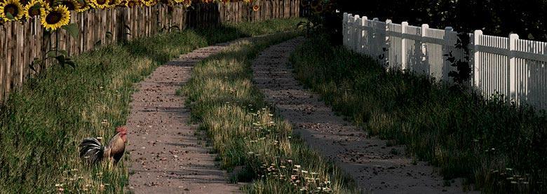 The track-road.jpg