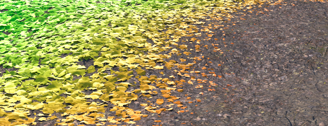 Introducing Forest Effects-image2016-5-27 11:30:8.png
