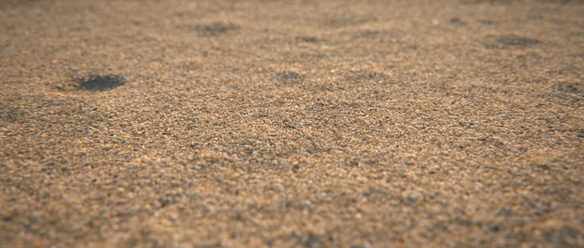Creating detailed sand with Forest Pack-sand_final_comp_.jpg