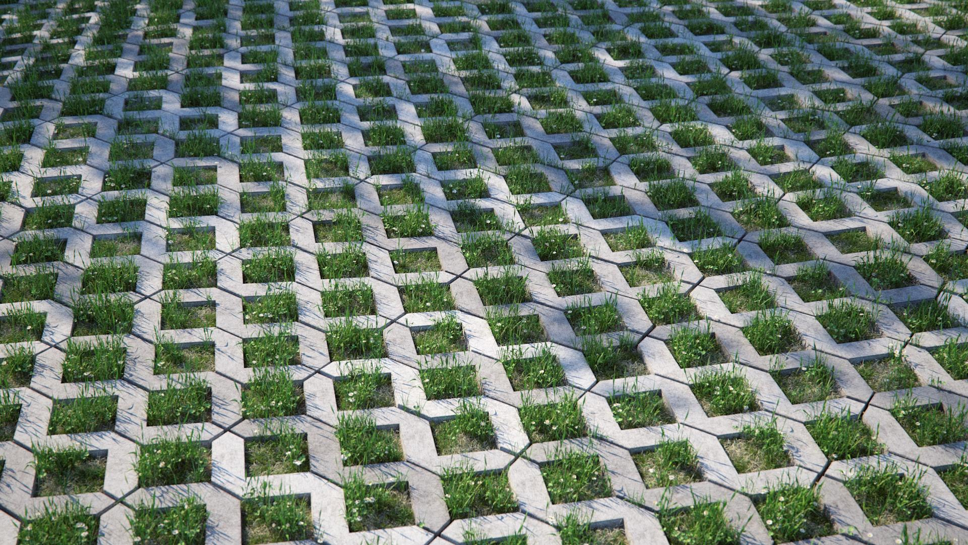 Combining Concrete Paving and Grass
